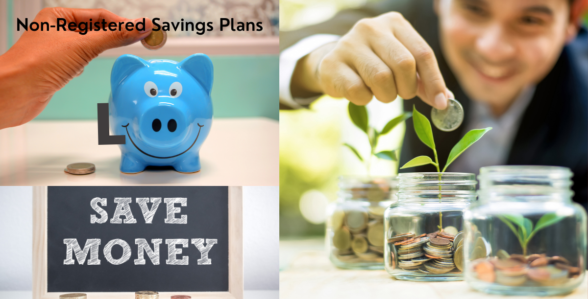 NON-REGISTERED SAVINGS PLANS – PETER PALEY – INVESTIA FINANCIAL SERVICES INC – WWW.INVESTIA.CA banner